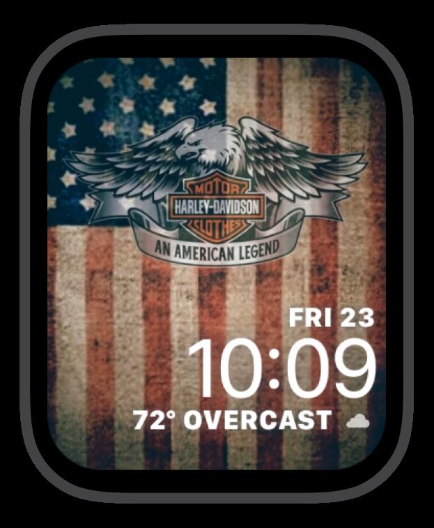 H-D Patriotic Eagle